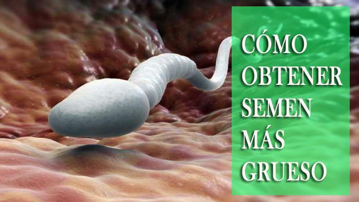 Formas mejores y efectivas de obtener un semen más espeso y aumentar el placer sexual