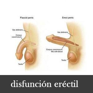 la deshidratación puede causar disfunción sexual