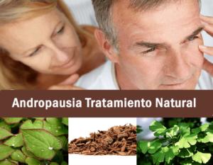Todo lo que necesitas saber sobre la Andropausia Tratamiento natural