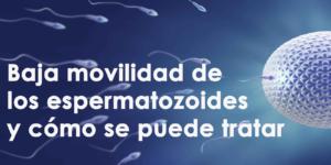 Las causas de la baja movilidad de los espermatozoides y cómo se puede tratar