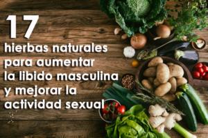 17 hierbas naturales para aumentar la libido masculina y mejorar la actividad sexual