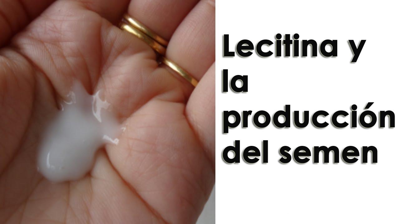 Lecitina y la producción del semen