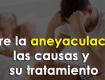 sobre la aneyaculación, las causas y su tratamiento